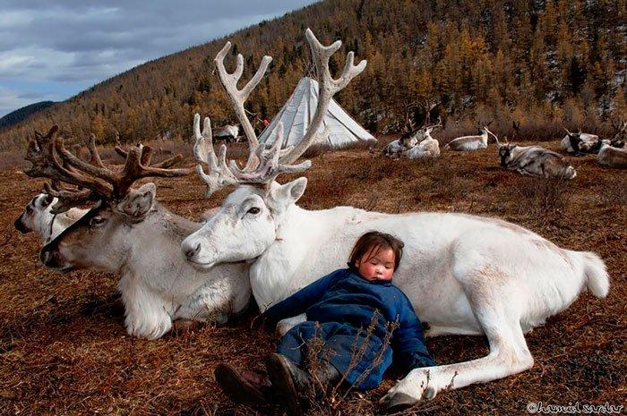pueblo-reno-mongolia-1
