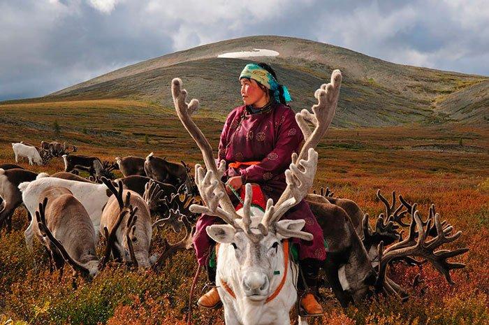 pueblo-reno-mongolia-2