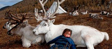 Aunque parezca una leyenda, este es el día a día del Pueblo Reno en el norte de Mongolia.