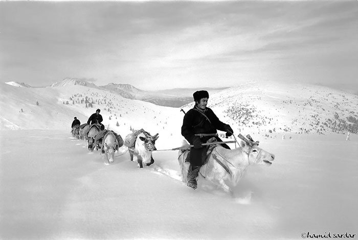 pueblo-reno-mongolia-4