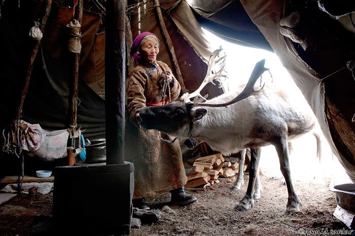 pueblo-reno-mongolia-6