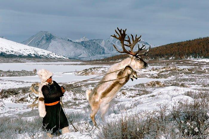 pueblo-reno-mongolia-8