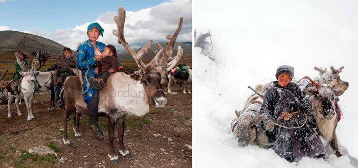 pueblo-reno-mongolia-9