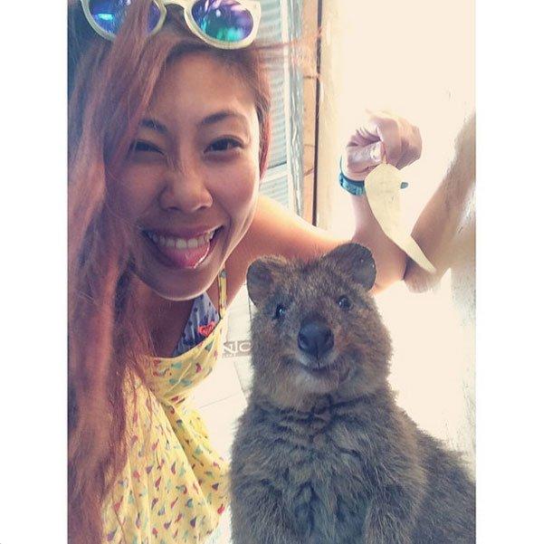 selfies-quokka14