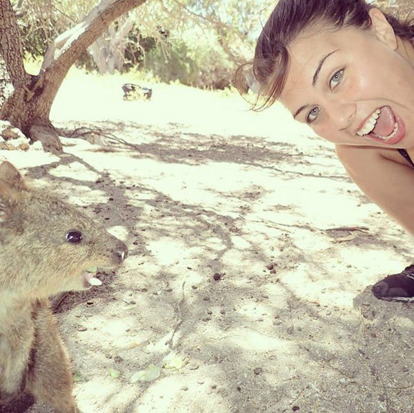 selfies-quokka3