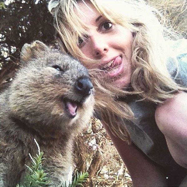 selfies-quokka8
