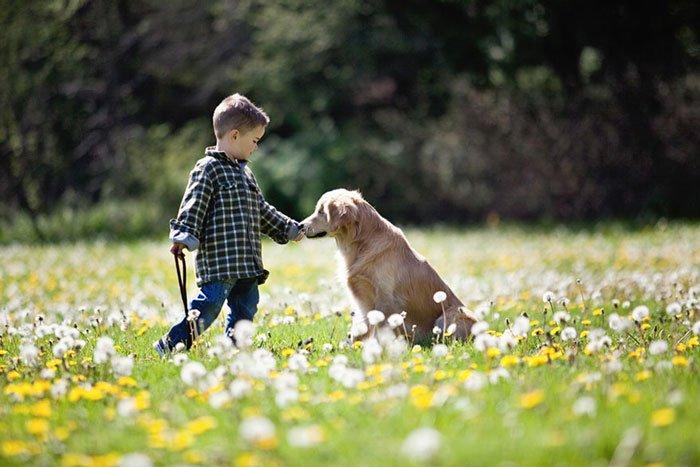 smiley-perro-terapia-ciego10