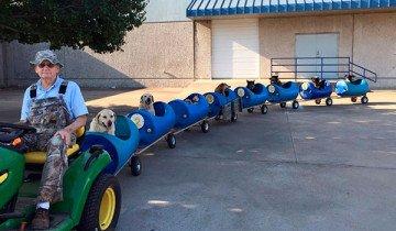 Hombre de 80 años construye un tren para pasear a perros callejeros rescatados.