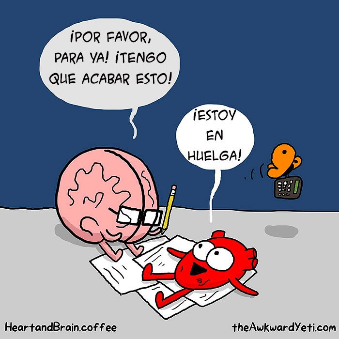 cerebro-vs-corazon-12