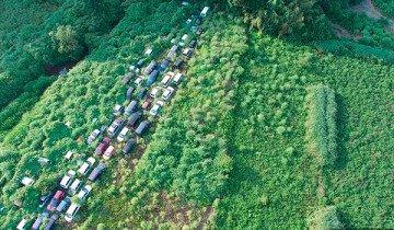 Imágenes inéditas de la zona de exclusión en Fukushima. Devorada por la naturaleza.