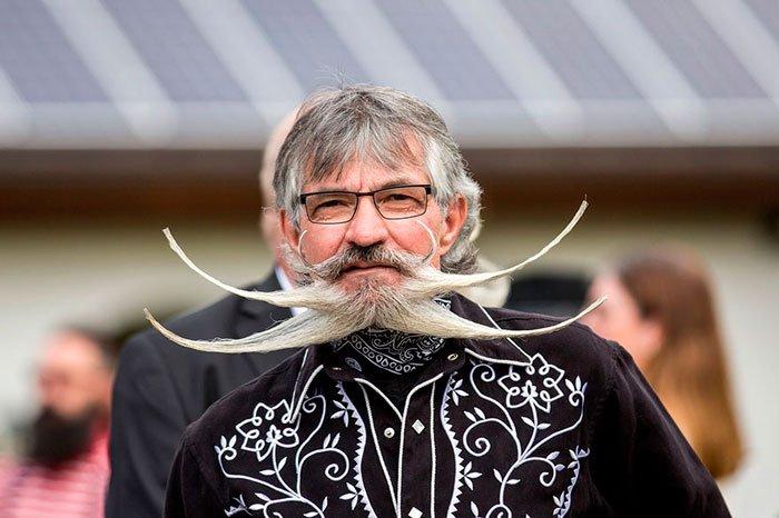 mundial-barbas-bigotes-2015-11