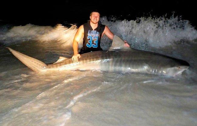 pescar-tiburones-manos-5