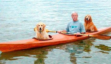 Un hombre construye un kayak para poder llevar a sus perros de aventura.
